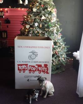 toys for tots pic